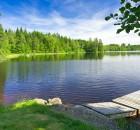 svensk-sommar